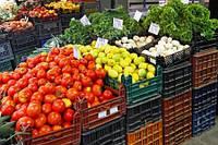 Как правильно выбрать ящики для хранения овощей и фруктов?