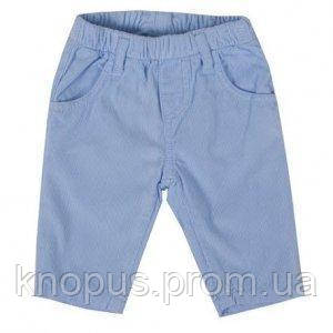 Вельветы на подкладке голубые для малышей, Girandola, размеры 80, 86