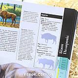 Книга Тварини дольодовикового періоду / Тварини дольодовикового періоду, (рос, укр мови), 8+, фото 5