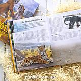 Книга Тварини дольодовикового періоду / Тварини дольодовикового періоду, (рос, укр мови), 8+, фото 9