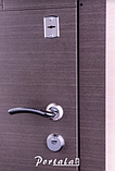"""Входная дверь """"Портала"""" (серия Элит) ― модель Калифорния, фото 2"""