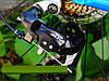 "Crosser Count 29"" Велосипед 2-х кол. синий Shimano алюминиевая рама противоударный обод, фото 7"
