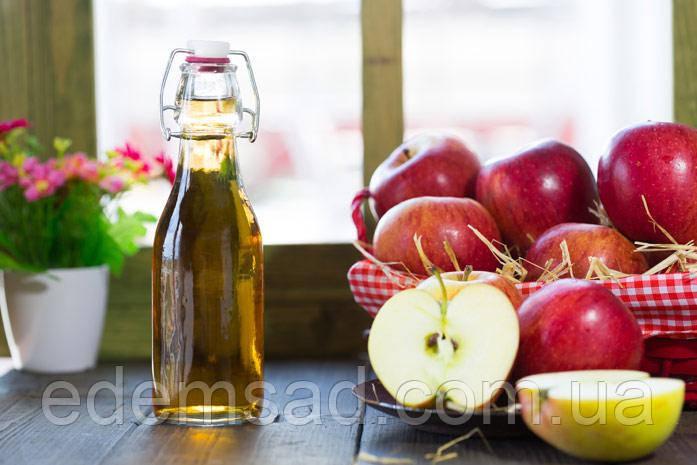 Уксус яблочный натуральный нефильтрованный с медом, 330мл