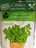 """Домашнее растение """"Базилик"""", 0,5 л"""