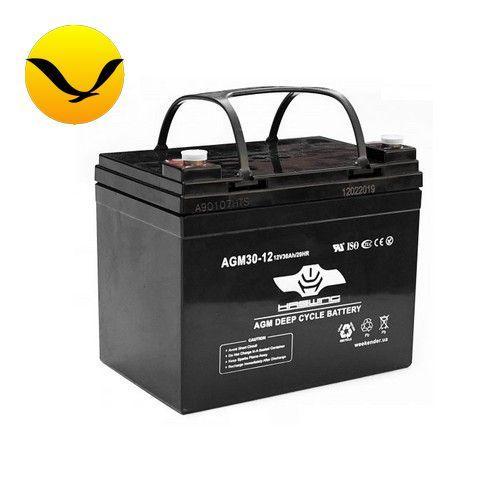 AGM аккумулятор Haswing 30a/h (Тяговый аккумулятор Хасвинг);