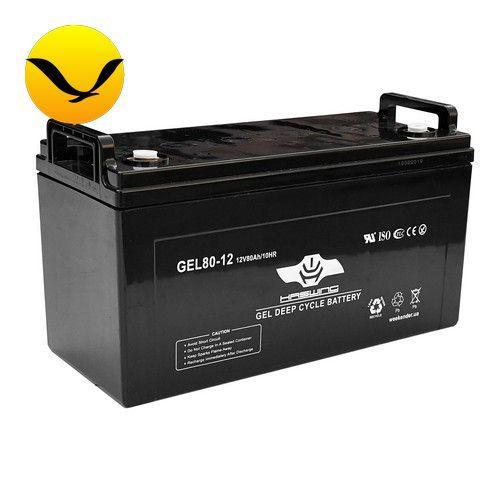 Гелевый аккумулятор Haswing 80a/h (Тяговый аккумулятор Хасвинг);