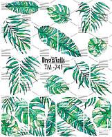 """Слайдер Dream Nails """"Микс"""", TM-741"""