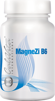 MagneZi B6 Магній-цинк B6 (90 таблеток)