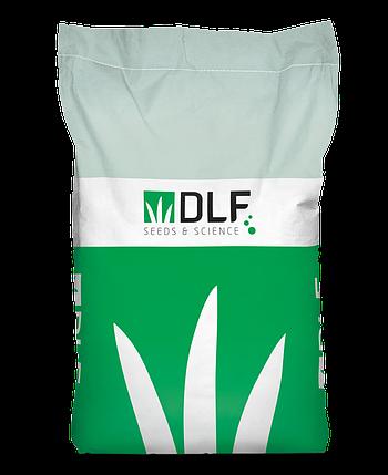 Газонная трава DLF Trifolium Овсяница красная MAXIMA (россыпь) - 1 кг, фото 2