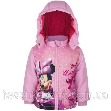 Розовая демисезонная куртка с Минни Маус, Minnie Mouse на девочек 12 месяцев, р. 74, Disney baby