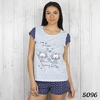 """Турецкий комплект-двойка женский: футболка и шорты """"Котики"""" Pink Secret PK5096"""