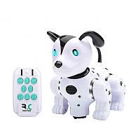 Інтерактивна іграшка FENGQI TOYS Naughty Puppy робот-собака на р/к Білий (SUN4168), фото 1