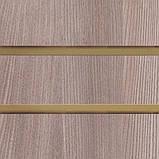 Экспопанель, экономпанель , дуб нельсон, шаг 100мм, 12 пазов, фото 2