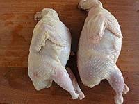 Перепелиное мясо оптом (тушка охолоджена)