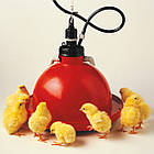 Автоматическая колокольная поилка для цыплят, кур Jumbo Junior, фото 3