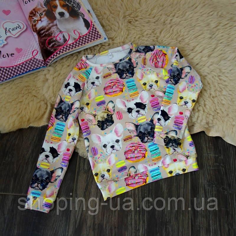 Кофточка реглан для девочки собачки Five Stars KD0227-110p