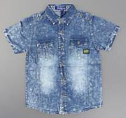 Джинсовая рубашка для мальчиков S&D оптом, 8-16 лет.