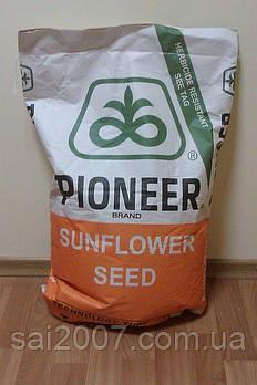 Семена подсолнечника Пионер ПР64А89