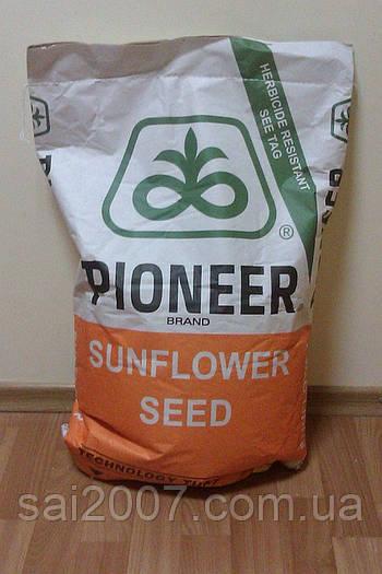 Семена подсолнечника Пионер ПР64Е83