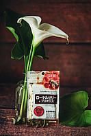Прополис маточкино молоко Япония (40 табл. х 20 дней)