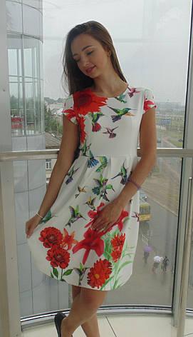 Платье женское Glo-Story, фото 2