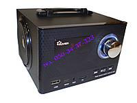 Радиоприёмник колонка KLIVIEN KL-A2D