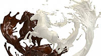 Акриловый клей для мозаичной штукатурки, мраморной крошки, цветного кварцевого песка, гранитной крошки ACRUMBS, фото 1