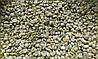 Кофе зеленый в зернах Коста - Рика SHB (ОРИГИНАЛ), арабика Gardman (Гардман)