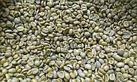 Кофе зеленый в зернах Коста - Рика SHB (ОРИГИНАЛ), арабика Gardman (Гардман), фото 1