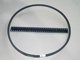 Ремень вентилятора 8,5х8х1018 ГАЗ 24 (пр-во ЯРТ)