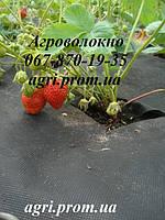 Агроволокно 60 г/м² черное (1,6м*50м), мульчирующее от сорняков, для клубники