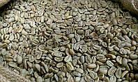 """Кофе зеленый в зернах Мексика """"Марагоджип"""" (ОРИГИНАЛ), арабика Gardman (Гардман), фото 1"""