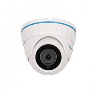 Видеокамера купольная AHD Tecsar AHDD-20F2M-out KIT