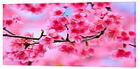 Картина на холсте Декор Карпаты Цвет сакуры 50х100 см (c162)