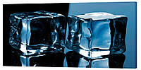Картина на холсте Декор Карпаты Лед 50х100 см (D924)