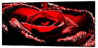 Картина на холсте Декор Карпаты Цветы 50х100 см (c12)