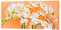 Картина на холсте Декор Карпаты Цветы 50х100 см (c111)