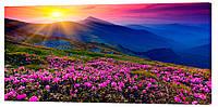 Картина на холсте Декор Карпаты Альпийские луга 50х100 см (p712)