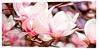 Картина на холсте Декор Карпаты Цветы 50х100 см (c558)