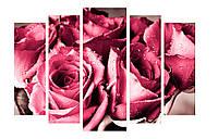 Модульная картина Декор Карпаты 120х80 см Розы (M5-c6)