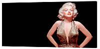 Картина на холсте Декор Карпаты Мэрилин Монро 50х100 см (MO3)