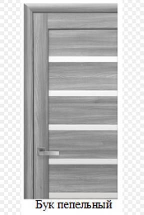 Дверное полотно Новый Стиль Линея бук пепельный  со стеклом сатин, фото 2