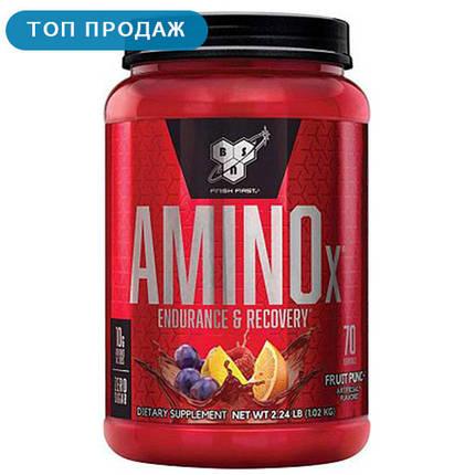 Аминокислота всаа BSN Amino X 1,01 кг, фото 2
