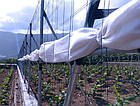 Агрошпалера Polifort 2,6мм бухта 1400м, фото 3