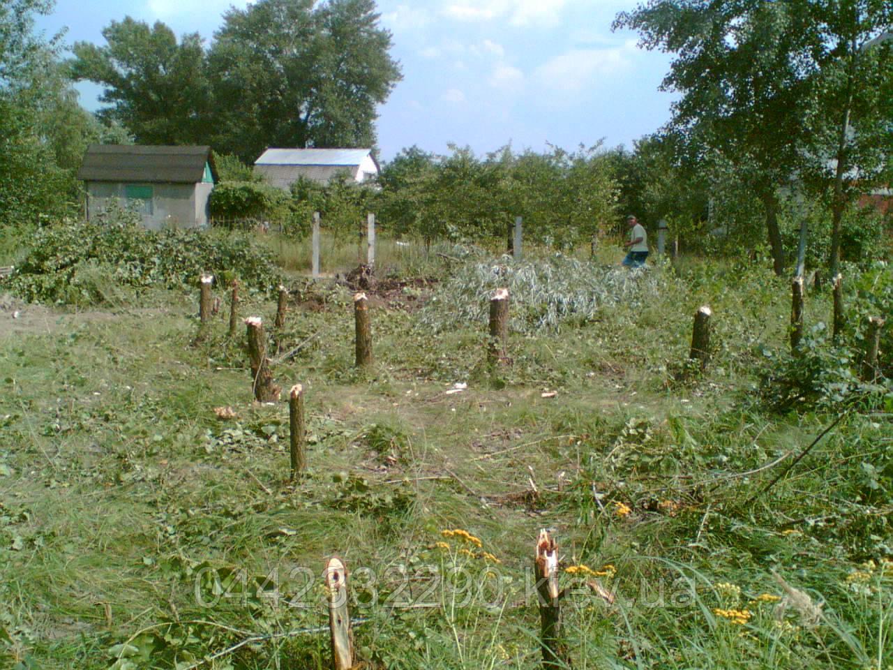 Расчистка участка под строительство в Киеве и Киевской области
