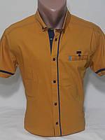 Рубашка мужская с коротким рукавом vk-170-3 Vip Stendo приталенная стрейч-коттон