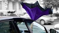 Умный зонт Kazbrella, фото 1