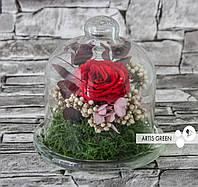 Стабилизированная роза в мини-колбе «Little passion»