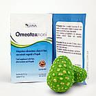 OmeotoxNoni. Добавка для здоровья дыхательных путей. 16 саше, 72 г, фото 3
