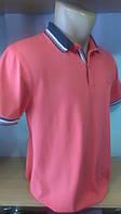 Стильная Мужская футболка-поло c вышивкой Blessed новинка этого сезона цвета в ассортименте